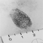 3 Pieces of Information Fingerprint Screening May Miss