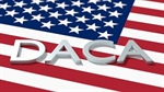 How will DACA's termination impact employers?